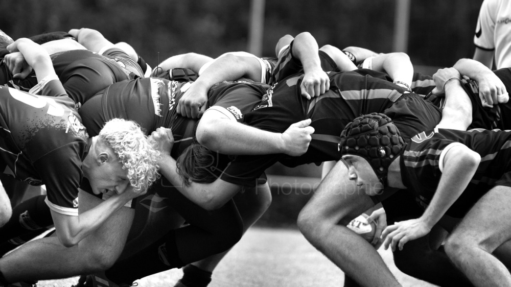 Regine Lemarchand-photographe de sport - RUGBY